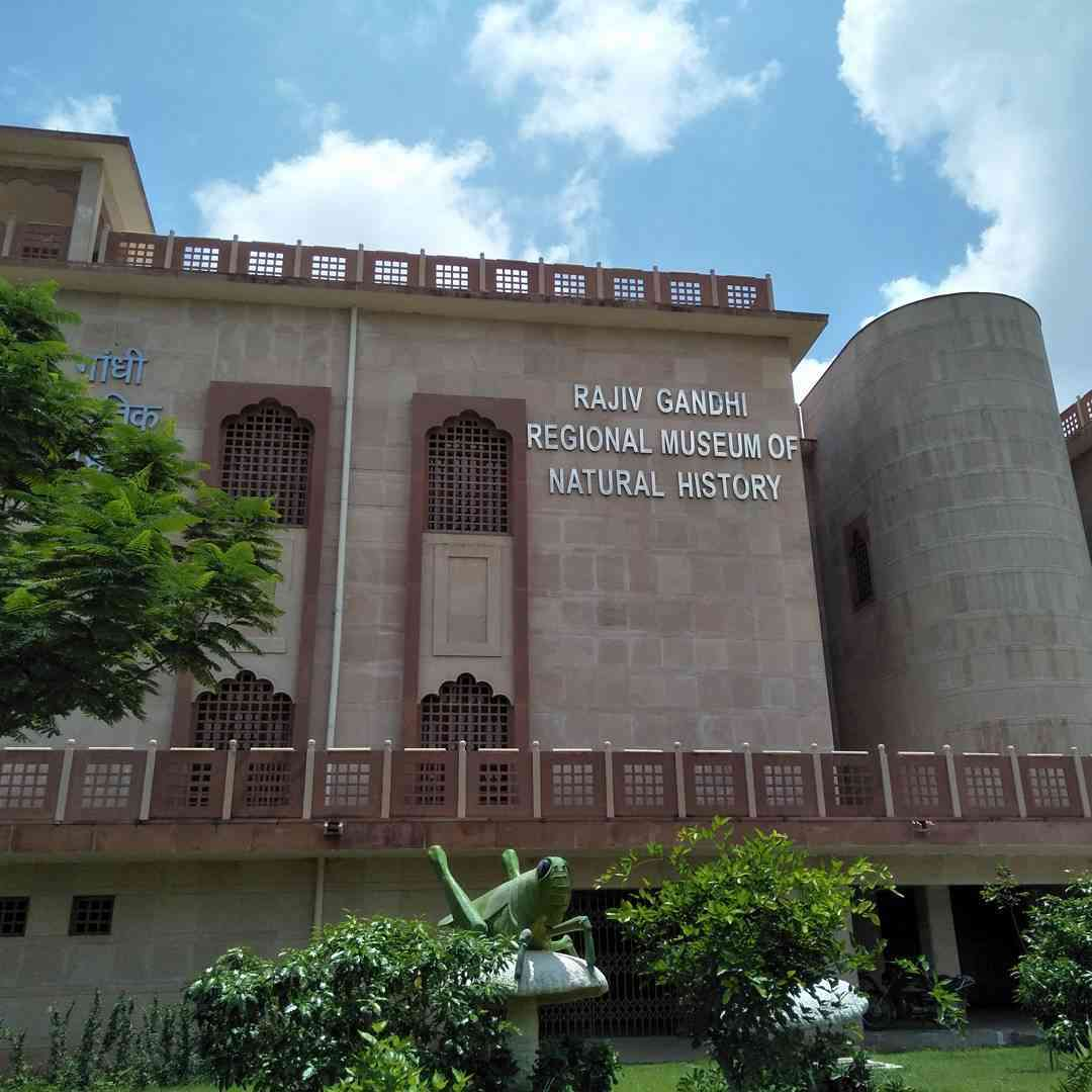 Rajiv Gandhi Museum of Natural History