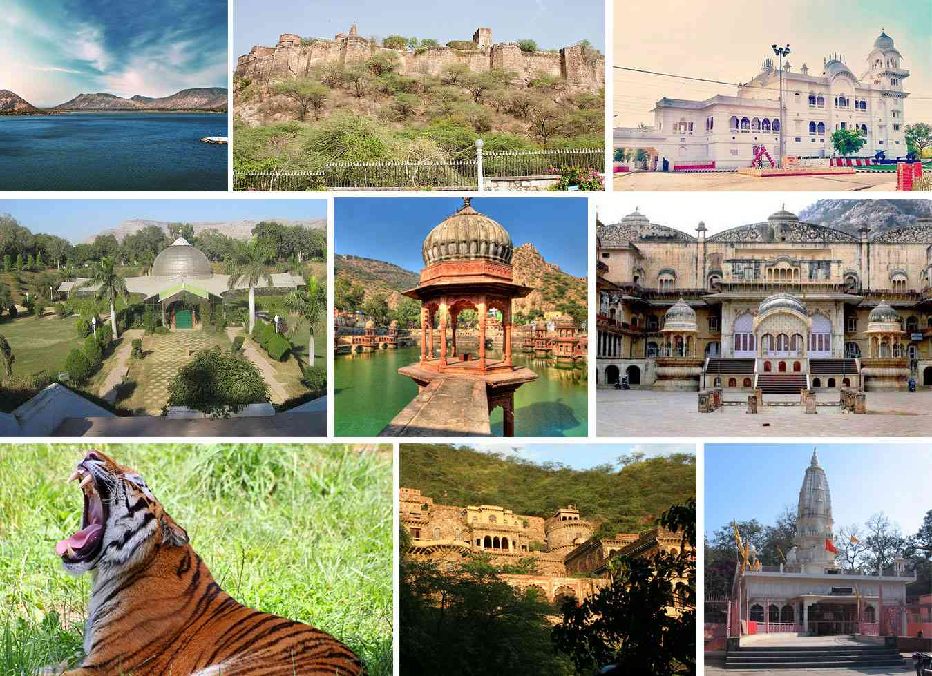 few of the must visit places in alwar