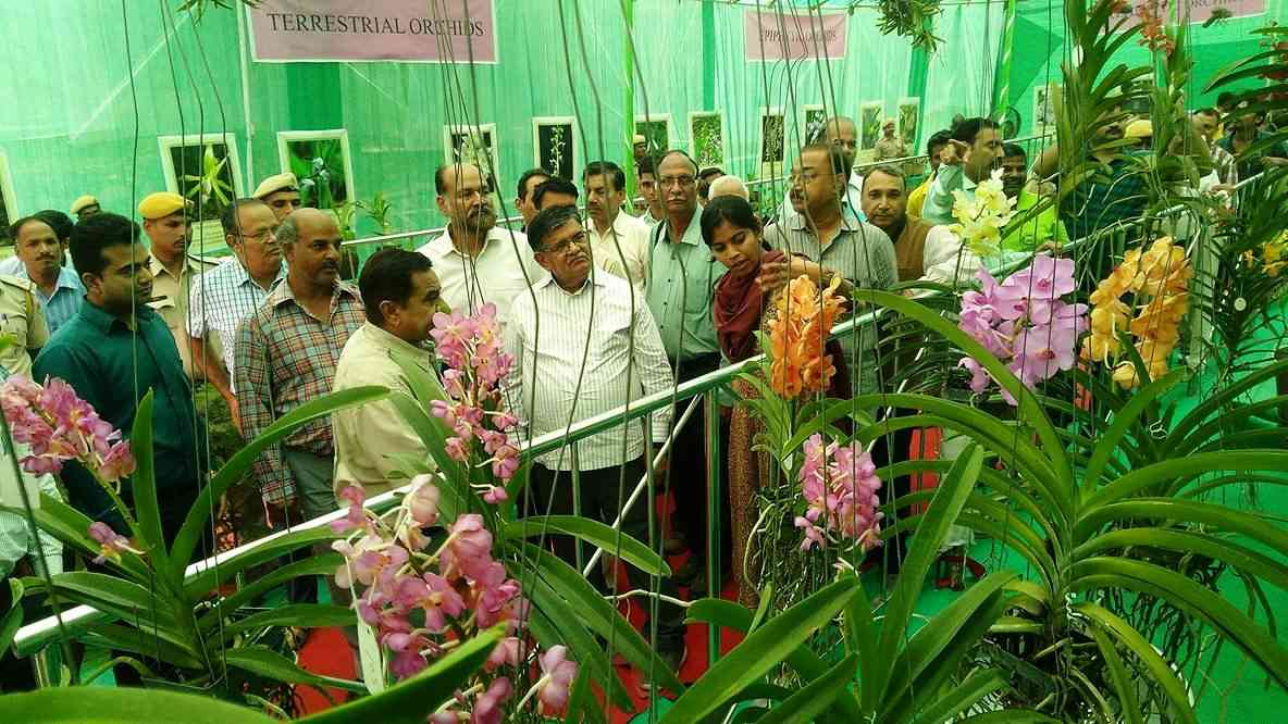 OrChid Festival in Udaipur