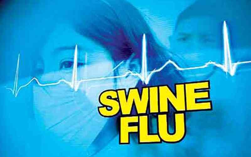 Swine Flu in Rajasthan