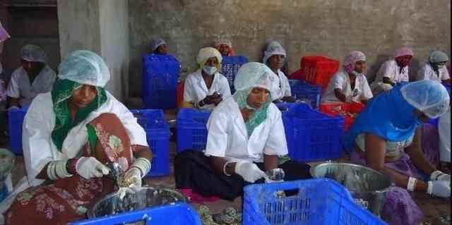 Tribal women of Pali
