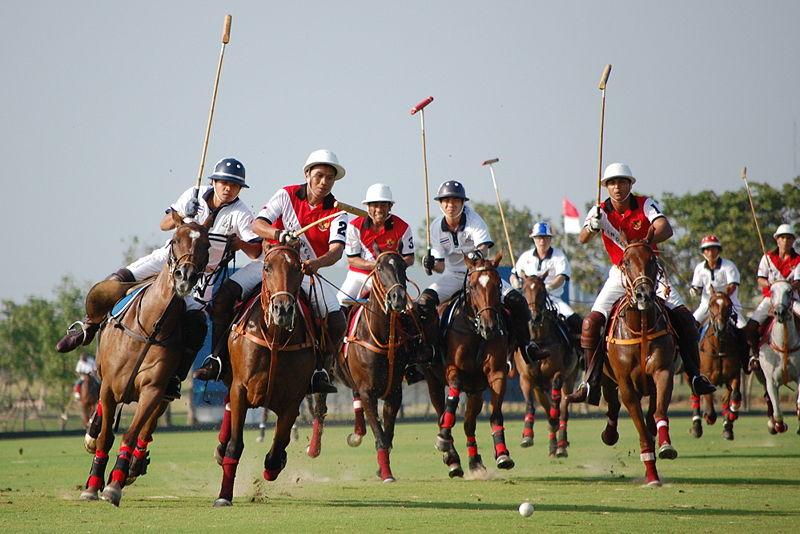 Horse Polo Rajasthan Polo Club