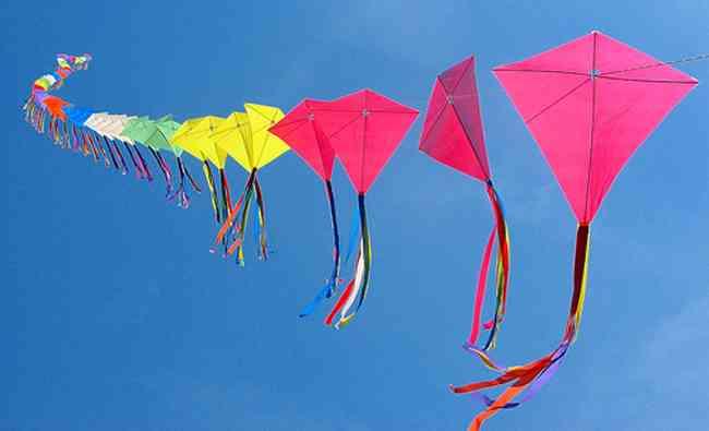 Kite Festival Jodhpur