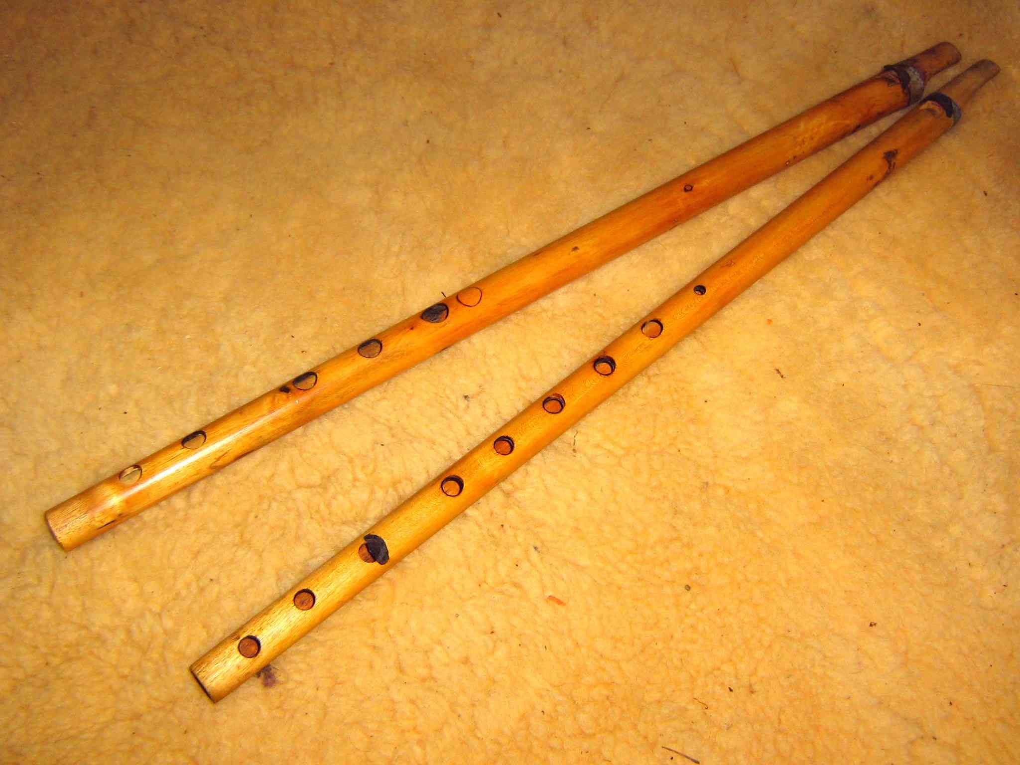 Rajasthani Musical Instruments
