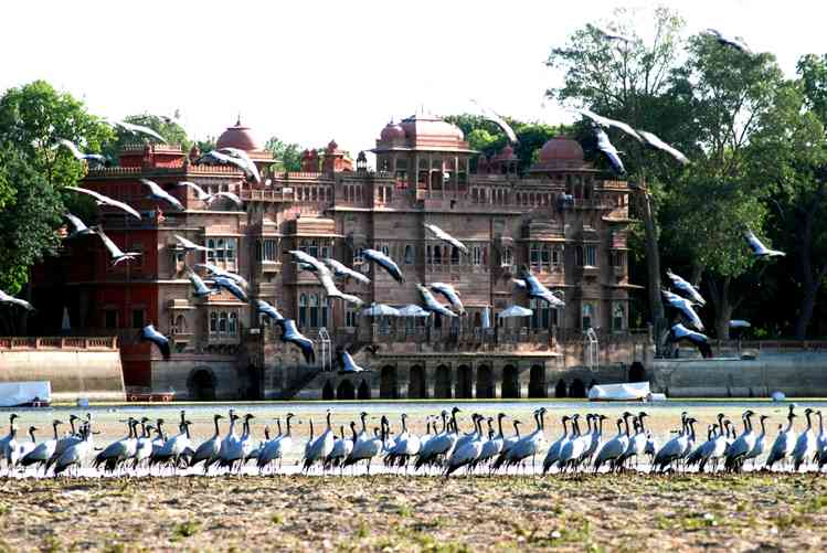 Places to visit in Bikaner- Gajner Palace