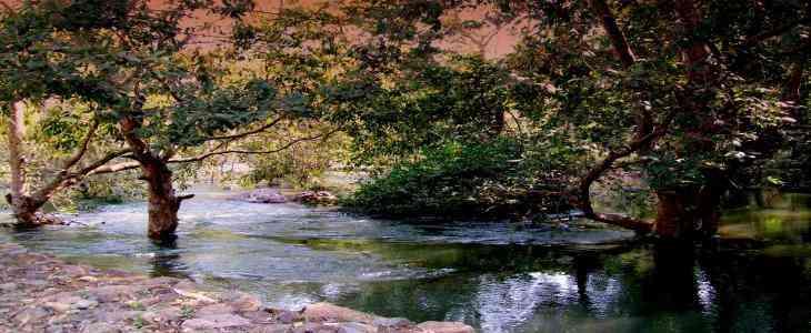 Bassi Wildlife Sanctuary